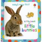 babys-very-first-little-book-of-bunnies